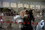 [English]A group a isolated minor taken in charge by France Terre d'Asile visiting the Versailles castle.<br /> <br /> [Francais]Versailles - 23 juillet 2008 - Visite du Chateau organise par France Terre d'Asile avec les mineurs isoles pris en charge dans le dispositif d'hebergement d'urgence.