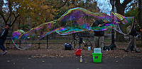 A man makes soap bubbles Central Park during late autumn in New York . November 11, 2013, Photo by Kena Betancur/VIEWpress.