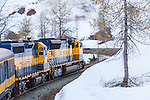 "Famous scenic train ride on Alaska Railroad Coastal Classic train between Seward and Anchorage, Alaska. Climbs to ""Grandview"" summit in Kenai Mountains."