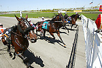 Standardbred action at the Meadowlands Racetrack  in East Rutherford, New Jersey.