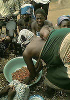West Africa, Liberia, Kpelle tribe: group of villagers shelling peanuts; woman carries baby strapped on back.