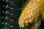 Photo illustration of how technology is making ethanol easier to produce....Photo stock for Ethanol in the Midwest. .(Chris Machian/Prairie Pixel Group)