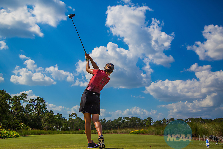 2015 W DI Golf Match Play