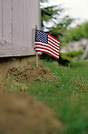 Mole hill in backyard of house with the mole hill having an American flag stuck in it at the top symbolizing the moles victory against the homeowner