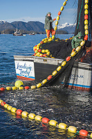 Commercial fishing vessel Leading Lady participates in the first 2006 Sitka Sac Roe Herring fishery opener on the north side of Middle island in Sitka Sound, March 2006.