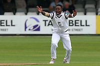 Fidel Edwards of Hampshire with an appeal for the wicket of Nick Browne during Essex CCC vs Hampshire CCC, Specsavers County Championship Division 1 Cricket at The Cloudfm County Ground on 19th May 2017