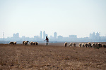 ISRAEL area of Be'er Sheva, Negev desert<br />
