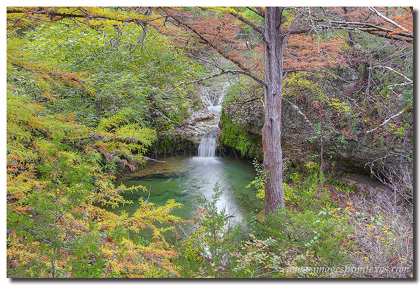 In November, Twin Falls at Pedernales Falls State Park in the Texas Hill Country offers one of the most pleasing views of fall colors around. This image was taken looking through the cypress trees from a little stand slightly above the small waterfall. One of the things that makes this special for me is that in all visits I've made to this little space, I've never seen anyone else there.