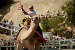 Ryan Gillaspie, of Pioneer, Calif., struggles to coax his camel over the finish line in a heat race at the 51st annual International Camel Races in Virginia City, Nevada  September 12, 2010. .CREDIT: Max Whittaker for The Wall Street Journal.CAMEL