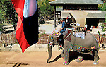 An mahout and his Asian elephant (elephas maximus)passing a Laos flag during the Elephant Asia festival procession in Hongsa, Laos.