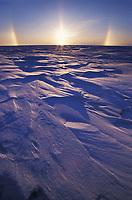 Snow Bow, near sunset, over wind blown snow on Alaska's Arctic Coastal Plains.