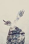 double exposure shot of a girl's hands and nature
