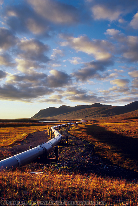 The Trans Alaska oil pipeline stretches across the autumn tundra of Alaska's Arctic coastal plains, Arctic, Alaska.