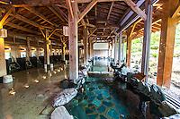 Onsen - Hot Springs