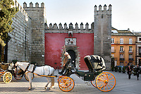 General view of the Puerta del Leon (Lion Gate), Real Alcazar, Seville, Spain, pictured on December 24, 2006, in the afternoon. In front of the gate a horse and carriage is waiting for tourists. The Real Alacazar was commissioned by Pedro I of Castile in 1364 to be built in the Mudejar style by Moorish craftsmen. The palace, built on the site of an earlier Moorish palace, is a stunning example of the style. The gate leads into the Patio de la Monteria (Hunting Courtyard). Picture by Manuel Cohen.