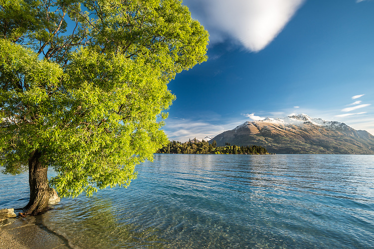 Cecil Peak, Lake Wakatipu, Late Afternoon, Queenstown, New Zealand - stock photo, canvas, fine art print