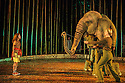 London, UK. 18.05.2016. Regent's Park Open Air Theatre presents RUNNING WILD, by Michael Morpurgo, in an adapttion by Samuel Adamson. the production is directed by Timothy Sheader and Dale Rooks, design is by Paul wills and lighting design by Paul Anderson. Picture shows: Ava Potter (as Lilly), Oona the Elephant (as herself). Photograph © Jane Hobson.