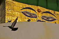 Swayambhu Buddhist temple and Stupa, also calleld the Monkey temple. Kathmandu, Nepal