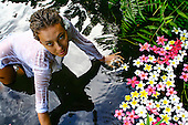 A woman in a white coverup in a pond with floating plumeria flowers, Kane'ohe, O'ahu.