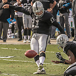 Oakland Raiders kicker Sebastian Janikowski (11) kicks field goal on Sunday, December 04, 2016, at O.co Coliseum in Oakland, California.  The Raiders defeated the Bills 38-24.