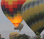 Hot air balloons sail over Napa Valley, California.