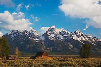 Old wooden Barn and grand teton range, Antelope Flats, Grand Teton NP,Wyoming, USA