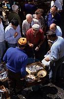 Europe/Italie/Sicile/Catane : Pêcheurs vendant leurs poissons sur le marché