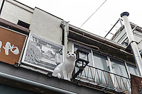 """A cat statue on a roof in Yanaka Ginza shopping arcade, Yanaka, Tokyo, Japan, April 19, 2012. Yanaka is part of Tokyo's """"shitamachi"""" historic working class wards. Recently it has become popular with Japanese and foreign tourists for its many temples, shops, restaurants and relaxed atmosphere."""
