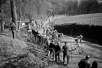 peloton over the Kemmelberg<br /> <br /> 3 Days of West-Flanders 2015<br /> stage 2: Nieuwpoort - Ichtegem 184km