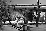 Man resting on a bench in Shibaura Park.