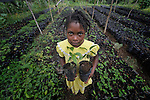 Mari Louna Juste, 11, holds seedlings in a plant nursery in Despagne, an isolated village in southern Haiti where the Lutheran World Federation has been working with residents to improve their quality of life. The LWF-sponsored nursery helps residents combat their country's rampant deforestation.