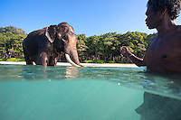 The bond between Rajan and his caretaker is very strong, they trust one another implicitly.