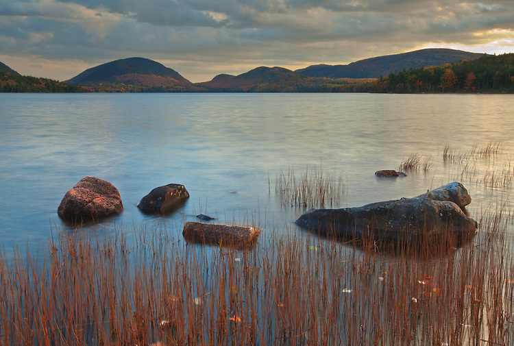Reeds and rocks along the Eagle Lake shoreline in Acadia National Park, Maine, USA