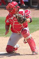 SUNY Cortland Red Dragons