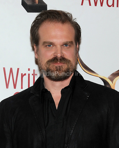 NEW YORK, NY - FEBRUARY 19: David Harbour attends the 69th Annual Writers Guild Awards New York ceremony at Edison Ballroom on February 19, 2017 in New York City. Photo by: John Palmer/ MediaPunch