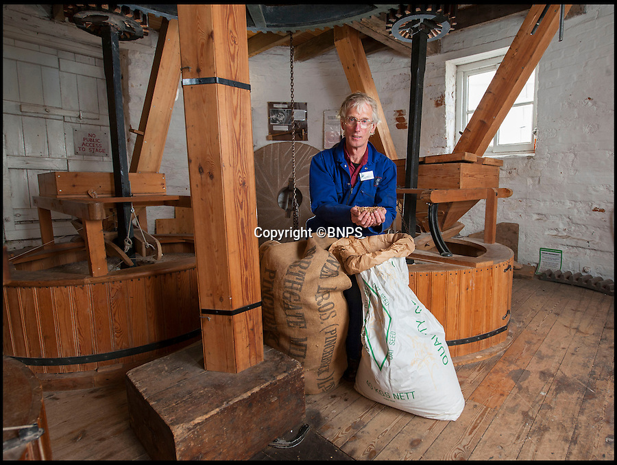 BNPS.co.uk (01202 558833)<br /> Pic: PhilYeomans/BNPS<br /> <br /> Flour power - Miller Jim Bailey.<br /> <br /> Octo-mill turns again...'Ferrari of windmills' is restored.<br /> <br /> Britains only eight sailed windmill is working once again after a &pound;150,000 restoration to repair its unique sails.<br /> <br /> Heckington Mill has ground wheat to make flour since 1830 but it was closed down when two of its enormous wooden sails were found to have rotted. <br /> <br /> Four years and more than 100,000 pounds were spent crafting the one-tonne, 34ft sails from the trunks of Siberian larch trees so that the historic mill near Boston, Lincs, could continue to operate.<br /> <br /> And after a nail-biting operation to crane the old sails off and replace them with the new ones, the Grade I-listed building has been brought back to life.<br /> <br /> Eight-sailed mills were at the forefront of milling technology and experts have described Heckington Mill as &quot;the Ferrari of windmills&quot;.<br /> <br /> Miller Jim Bailey, 62, hopes that with the help of the mill's new sails he can increase output to five tonnes of flour a year within the next three years.