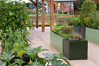 Raised bed vegetable garden with corn, herbs, squash, grapes, and upscale house