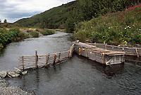 Native American Indian Salmon Fish Trap across Creek, Northern BC, British Columbia, Canada