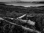 Old timbers lying in grass on headland over looking the sea