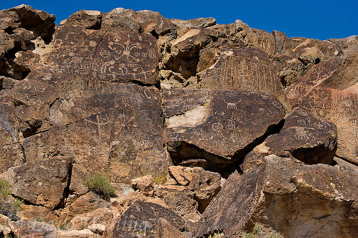 711060003 native american petroglyphs on volcanic rock along fish slough road in mono county california