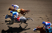 April 7, 2012. I'll Have Another and Mario Gutierrez(top) win the Santa Anita Derby(GI) at Santa Anita Park in Arcadia, CA.