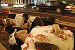 Zombie softball players lay on the sidewalk in downtown Lexington before the start of the Thriller Zombie parade, Sunday, Oct. 30, 2011. Photo by Brandon Goodwin | Staff.