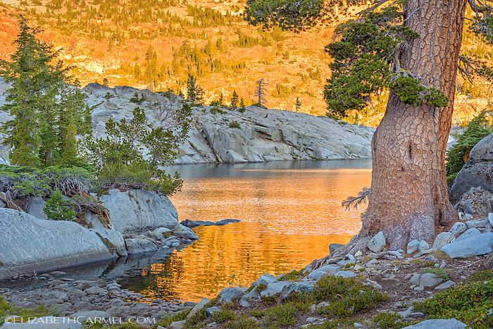 Golden Sunrise, Lake Fontanellis