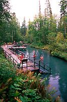People soaking in Liard Hot Springs, Liard River Hot Springs Provincial Park, Northern BC, British Columbia, Canada - along Alaska Highway, Summer