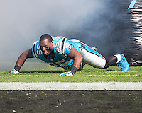 The Carolina Panthers defeated the Atlanta Falcons 34-10 in an inter-division rivalry played in Charlotte, NC at Bank of America Stadium.  Carolina Panthers fullback Mike Tolbert (35)