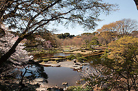 A view across the ornamental lake at Higashi-Gyoen, the East Gardens of the Imperial Palace in Tokyo