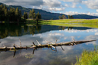 Trout Lake in Yellowtone National Park