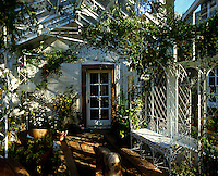A conservatory filled with flowering plants, wicker furniture, containers and a wrought-iron bench