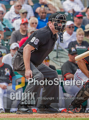 10 March 2015: MLB Umpire Chris Conroy watches one go foul during a Spring Training game between the Miami Marlins and the Washington Nationals at Roger Dean Stadium in Jupiter, Florida. The Marlins edged out the Nationals 2-1 in Grapefruit League play. Mandatory Credit: Ed Wolfstein Photo *** RAW (NEF) Image File Available ***