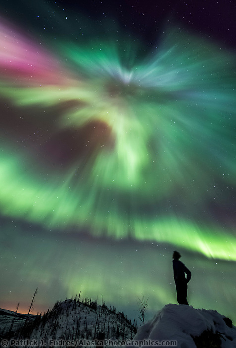 Man watches the northern lights burst into a colorful display during a night of high aurora activity in the White Mountains Recreation Area in Alaska's interior. March 17, 2013. Aurora corona as seen when standing directly below a bundle of parallel plasma-channeling magnetic field lines that are converging on a point high in the sky.